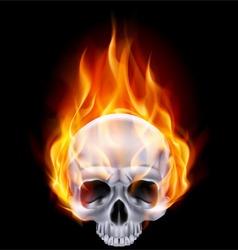 Chrome metal fair skull 02 vector image vector image