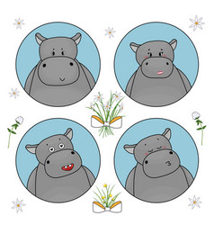 couple cute hippos which are in love hippo vector image