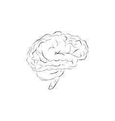 Doodle brain vector image