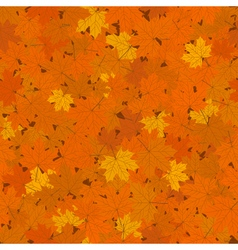 Fallen Maple Leaves Seamless Background vector