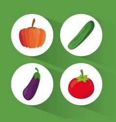 Set organic healthy food vector