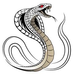vector snake cobra vector image