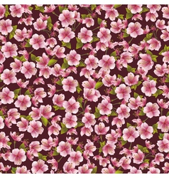 Background seamless pattern with sakura blossom vector image