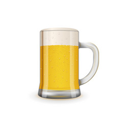 fresh and tasty glass of beer vector image