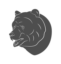 bear icon silhouette vector image