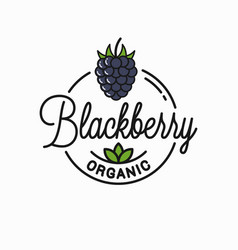 blackberry logo round linear logo organic vector image