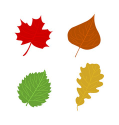 Cartoon flat autumn leaves vector
