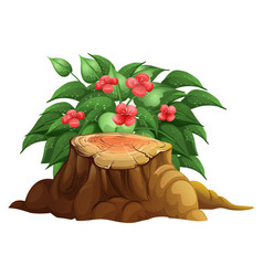 Little red flowers and stump wood on white vector
