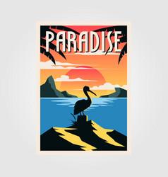 paradise beach vintage poster pelican bird design vector image