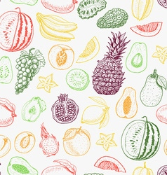 Seamless pattern with colored fruits on white vector