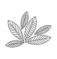 Silhouette leaves with ramifications icon vector