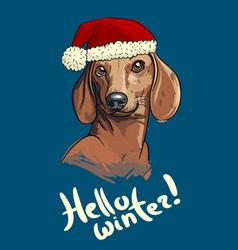 sketch art of cute duchshund dog vector image