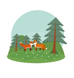 Cute foxes in the forest vector
