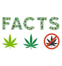 Facts label mosaic of marijuana vector