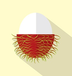 Flat Design Rambutan Icon vector image