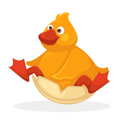 Funny plump baby duck with red beak and legs vector