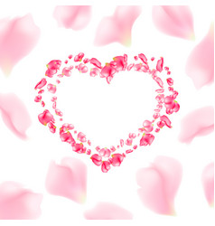 rose petals heart for valentines day vector image