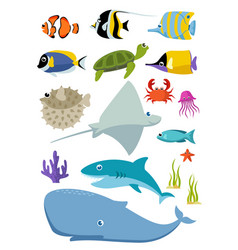 sea creatures and fish set vector image