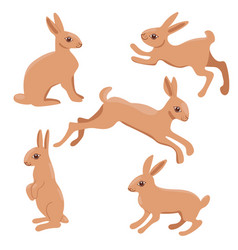 set rabbits isolated on a white background vector image