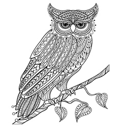 Hand drawn magic Owl sitting on branch for adult vector image vector image