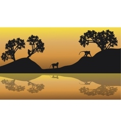 Silhouette of Monkey in lake vector image vector image