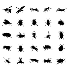 Beetles silhouettes set vector image vector image
