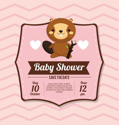 baby shower card invitation beauty beaver vector image