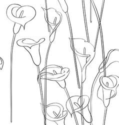 calla pattern vector image