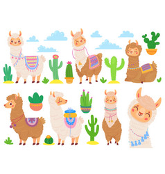 cartoon mexican alpaca funny llamas cute vector image