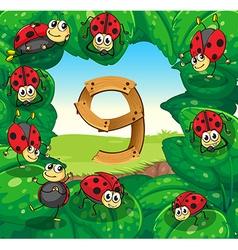 Number nine with nine ladybugs on leaves vector