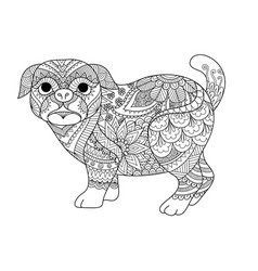 pug coloring vector image