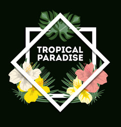 tropical concept with beautiful and colorful vector image