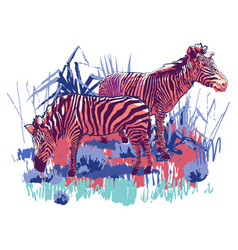 Two zebras standing in steppe landscape vector