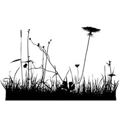 Wild plants and flower silhouettes vector