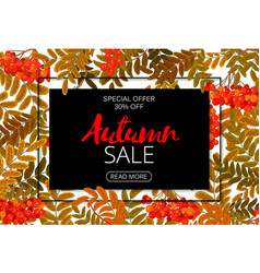 horizontal autumn sale banner foliage and frame vector image vector image