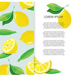 citrus banner design - colorful lemons banner vector image vector image