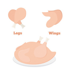 fresh chicken parts - wings legs tasty fast food vector image