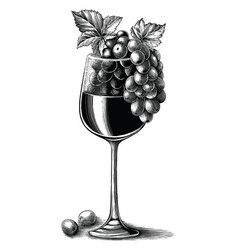 grape wine with glass hand drawn vintage vector image