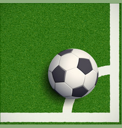 Soccer ball on grass football stadium vector