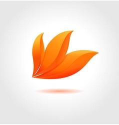 Orange flower vector image vector image