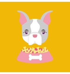 Cute doggy girl with food bowl vector