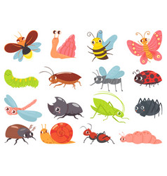 Cartoon bugs bainsect funny happy bug and vector