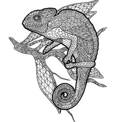 coloring book page with chameleon on the branch vector image