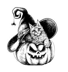cute kitten in a hat lies on a pumpkin vector image