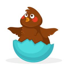 cute plump baby bird inside blue egg shell vector image