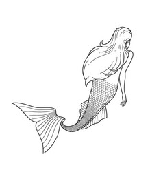 Graphic mermaid view from the back vector