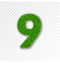 grass number nine green number 9 isolated on vector image