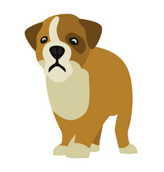 small dog vector image