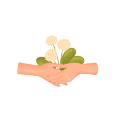 Two hands hold a bouquet lush inflorescences vector