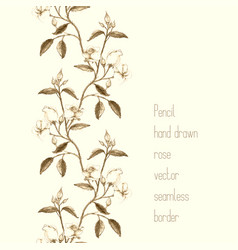 vertical border made of pencil sketched rose vector image